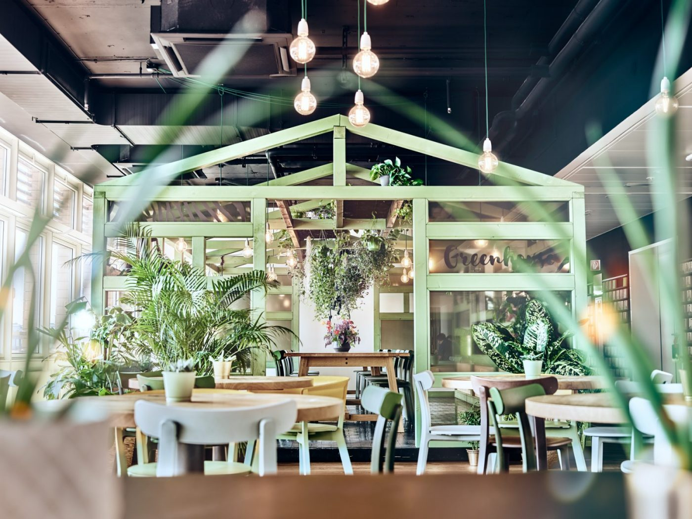 Mathes Magazin Businesscase Urban Jungle